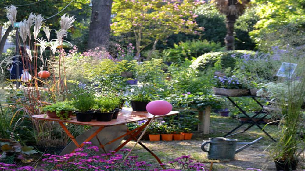 Un giardino segreto ispirato alla fantasia eventi a rimini for Giardino rimini