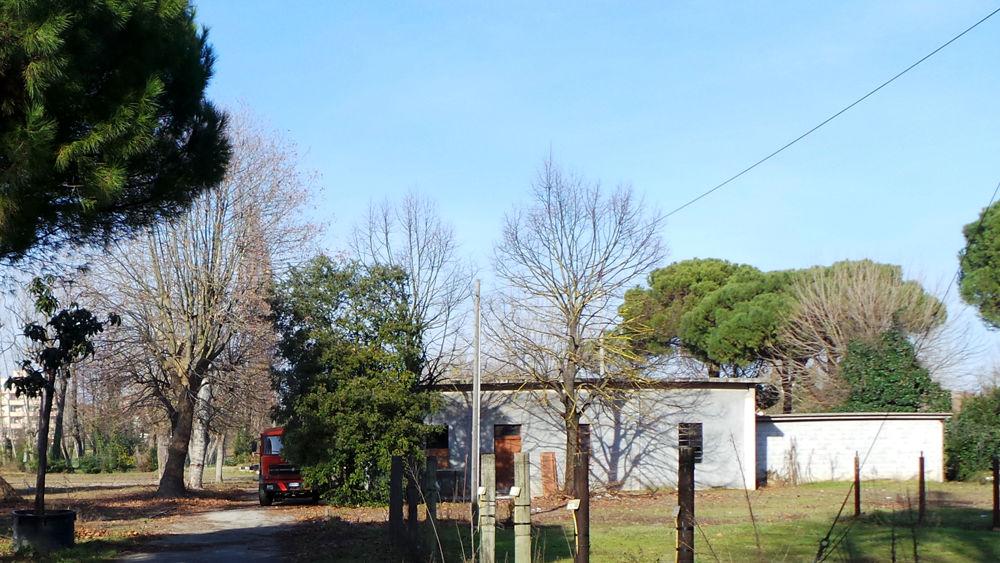 ... area ex vivaio Fabbri diventa un polo del verde e della natura